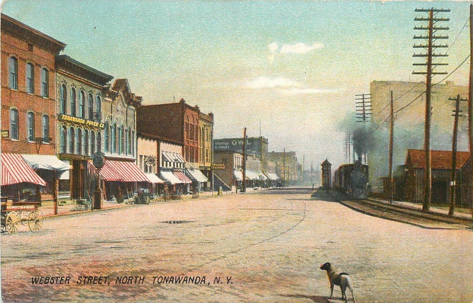 Webster Street, with dog, postcard.jpg