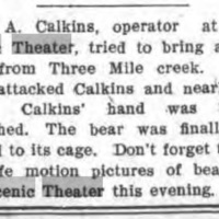 Scenic Theatre Calkins attempts to bring live bear from three mile creek, article (Tonawanda News, 1907-07-20).jpg