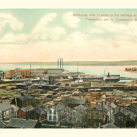 Birds-eye view of some of the dockage, postcard (c1900).jpg