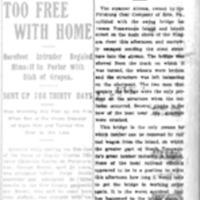 Steamer Alcona Crashes Into the Swing Bridge, article (Tonawanda News, 1907-10-23).jpg