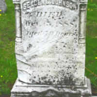Johnson, Selden G., photo of grave in Sweeney Cemetery.png