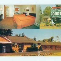 Ellicott Park Court Motel, photo postcard (c1977).jpg