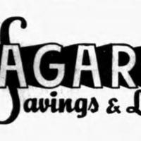 Niagara Savings and Loan, logotype.jpg