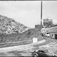 International Paper Co., pulp wood pile, photo (1936-09).jpg